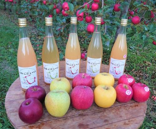 無添加りんごジュース、ストレートジュース、南信州のりんごジュース、くまちゃん農園りんごジュース、ピンクレディーりんごジュース